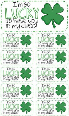 3 Adorable and Free St. Patrick's Day Tags Printables - lucky to have you in my class (print on labels) patricks day ideas for preschool 3 Adorable & Free St. St Patrick Day Treats, St Patrick Day Activities, Classroom Crafts, Kindergarten Classroom, Classroom Ideas, Holiday Activities, Preschool Activities, April Preschool, Student Gifts