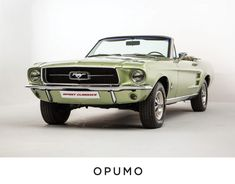 Ford Mustang 1960, 1967 Mustang Convertible, Vintage Mustang, Mustang Cars, Green Mustang, Green Cars, Tyler Durden, Classic Mustang, Future Car