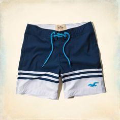 Dudes Daley Ranch Swim Shorts | Dudes Swim | HollisterCo.com