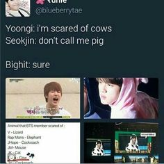 BTS| MY JIN IS A PRINCESS, MY BBY YOONGI.....AH~! TO CUT IN THE COW ONSIE
