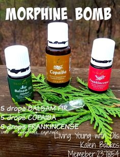 Morphine Bomb. Natural pain killer using Young Living Essential Oils. 5 drops Balsam Fir, 5 drops Copaiba, 5 drops Frankincense into a clear vegetable capsule. Take as needed! Kalenmarie13@gmail.com: