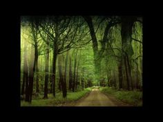 Dan Spataru - Drumurile noastre - YouTube