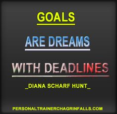 Goals are dreams with deadlines.  ~Diana Scharf Hunt