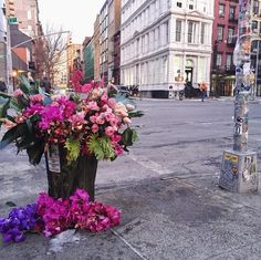 """'If we can bring nature — something wild and sumptuous — to New Yorkers and make them smile, the way people smile when they witness a random act of kindness, then that is a great thing,' he said. 'That is my goal. It's a really simple vision but powerful, I think, to try to create an emotional response through flowers."""""""