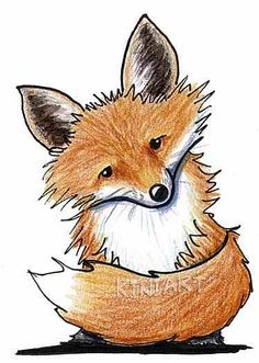 Little Fox Cartoon Drawing
