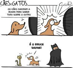Um Sábado Qualquer   Cães e Gatos Like Animals, Animals And Pets, Funny Faces, Funny Comics, Comic Strips, Cat Lovers, Nerdy, Dog Cat, Comic Books