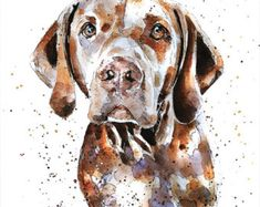 "Vizsla head study "" Print Watercolour A3 (30*40cm/16*12 Inches)"
