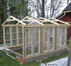greenhouse made from old windows - lindaensblog.blogspot.com by Ann-Marie Del Monte #greenhouseideas