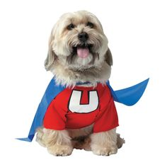 Underdog Costume For Pets