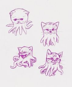 octapuss Oh My God. I'm in Love and stealing this. My two favorite things CATS and OCTOPUS. Perfect for Sara