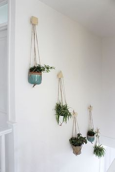 Wall of hanging plants with DIY plywood hooks and macrame hangers Growing Spaces Deco Nature, Decoration Plante, Deco Floral, Hanging Planters, Diy Hanging, Wall Planters, Hanging Gardens, Plant Decor, Stairways