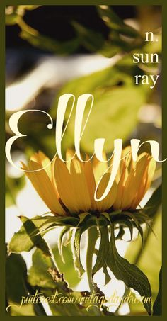 Baby Girl Name: Ellyn. Meaning: Sun Ray. Origin: Greek. https://www.pinterest.com/vintagedaydream/baby-names-by-me-vintagedaydream/?eq=baby&etslf=2788