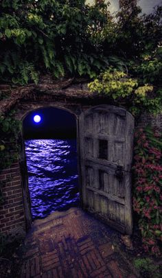 Moonlight reflecting over the ocean through ancient doorway. Beautiful Gif, Beautiful Places, Beautiful Pictures, Fantasy Kunst, Fantasy Art, Gif Animé, Gif Art, Fantasy World, Oeuvre D'art