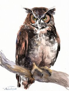 Horned Owl Original watercolor painting 12 X 9 in by ORIGINALONLY, $48.00