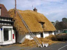 IMG_6778 Honeysuckle Cottage