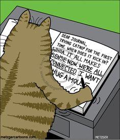 Adventures in catnip! | The Bent Pinky on GoComics.com #humor #comics #cats