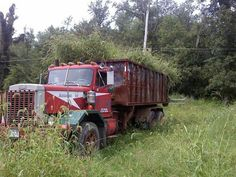 Autocar Abandoned, Junk Yard, Trucks, Rigs, Vehicles, Left Out, Wedges, Truck, Car