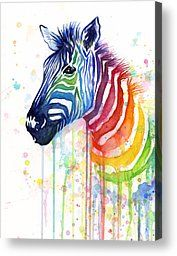rainbow canvas - Google Search