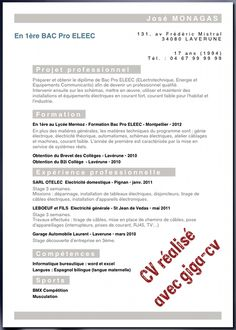 Exemple cv stage bac pro cv anonyme for Stage de cuisine gratuit