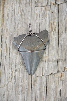 Megalodon Shark Tooth Pendant by JustBeadHappy2 on Etsy https://www.etsy.com/listing/249769833/megalodon-shark-tooth-pendant