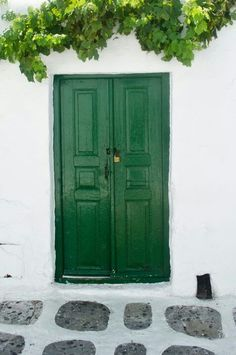 green door with grape vine decor. Windows, New Homes, Windows And Doors, Green Door, Tall Cabinet Storage, Grape Vine Decor, Doors