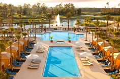 5 Hotels Near Walt Disney World You Should Definitely Consider for Your Next Vacation