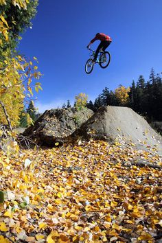 Autumn Mountain Bike In Whistler -  It'll be great to go all over the world and hit the trials.   One with nature and machine.