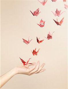 Origamis que veem comer à mão