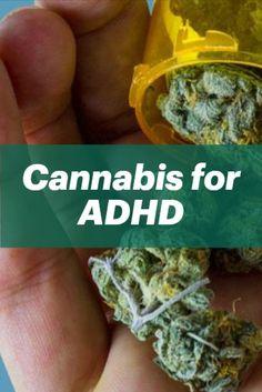 Cannabis Plant, Herbal Remedies, Health Remedies, Weed Strains, Herbalism, Life Online, Adhd