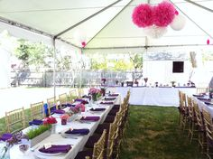 backyard engagement party, purple and pink flower centerpieces in random jars and vases; wheat grass centerpieces in metal troughs from home depot    tent, white table linens with purple napkins, gold chivari chairs with eggplant/purple cushions    purple/spring flowers themed party