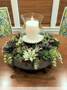 Feb 2020 - April Progress & May Goals - Addicted 2 Decorating® - breakfast room succulent garden centerpiece - Succulent Centerpieces, Succulent Arrangements, Planting Succulents, Table Centerpieces, Floral Arrangements, Summer Centerpieces, Centerpiece Wedding, Centerpiece Ideas, Garden Care