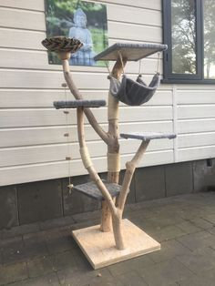 Cat Tree House, Indoor Cats, Cat Trees, Cat Scratching Post, Cat Cafe, Catio, Diy Stuffed Animals, Maine Coon, Woodworking