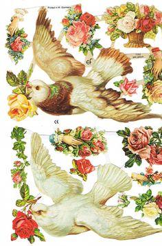 doves, victorian scrap