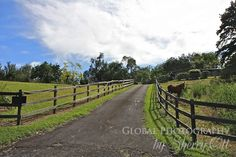 Farms & Ranches of the Big Island