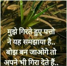 Sahi farmaaye us patthene Zindagi Ka Hakeekath usne Anubhav poorvak bathaya. Strong Quotes, True Quotes, Words Quotes, Positive Quotes, Funny Quotes, Qoutes, Heart Touching Love Quotes, Best Love Quotes, Studying Funny