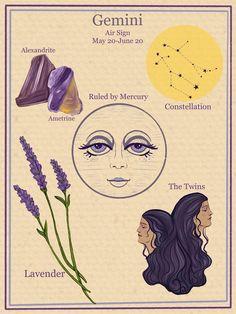 Zodiac Signs Astrology, Zodiac Art, Zodiac Horoscope, Art Zodiaque, Gemini Wallpaper, Gemini Art, Gemini Zodiac Tattoos, Gemini Traits, Illustration Botanique