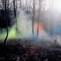 Bad Faerie JuJu Forest