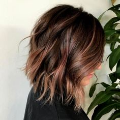 ----sponsored ads---- If you have ever considered brown hair to be boring or dull, think again. With the balayage technique dye is applied to hair wit. Fresh Hair, Soft Hair, Medium Hair Styles, Curly Hair Styles, Natural Hair Styles, Different Hairstyles, Cute Hairstyles, Brunette Hairstyles, Perfect Hair Color