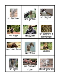 Primary French Immersion Resources: Les animaux de zoo Spanish Teaching Resources, French Resources, Teaching French Immersion, Le Zoo, Primary Science, French Classroom, French Language, Second Language, Animals For Kids