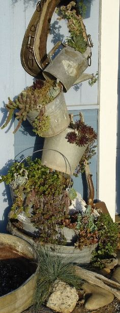 tipsy turvy planter, rustic charm, tipsi pot, tipsy pot planters, flowering container garden, garding ideas, watering can ideas, vertical garden pots, old tins
