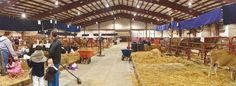 Barn | Kubota Agriplex | South Florida Fair