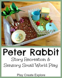 Peter Rabbit Small World Sensory Bin  http://www.playcreateexplore.com/2013/05/peter-rabbit-small-world-sensory-bin.html