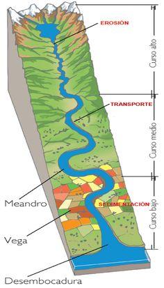 EL CUADERNILLO DE SOCIALES DE 1º ...: Unidad 4. Ríos y mares. La hidrosfera