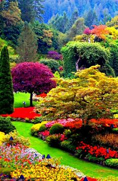 32 Lovely Flower Garden Design Ideas To Beautify Your Outdoor - New ideas Beautiful Nature Pictures, Beautiful Nature Wallpaper, Amazing Nature, Beautiful Landscapes, Beautiful Scenery, Amazing Pictures, Most Beautiful Gardens, Beautiful Flowers Garden, Garden Types