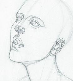 https://www.facebook.com/Bowh7/photos/?tab=album&album_id=520981004755002 #head #anatomy