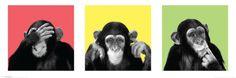 See No Evil, Hear No Evil, Speak No Evil Prints at AllPosters.com