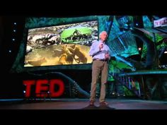 Environmental TEDtalk - Allan Savory: How to reverse climate change by greening the world's deserts - YouTube