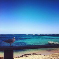 Tweet Perth Margaret River Trip - Day 4 - Tweet Perth Blog