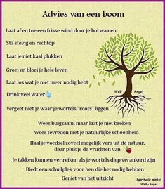 Wijsheid van de boom – Mareiki ॐ Source by , Mantra, Cool Words, Wise Words, Best Quotes, Life Quotes, Dutch Quotes, Philosophy Quotes, Collor, Just Be You