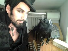 The Captain posted these pics of Morgan the Raven.  St. Petersburg show.